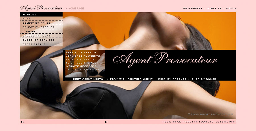 agent provocateur marketing strategy product naming